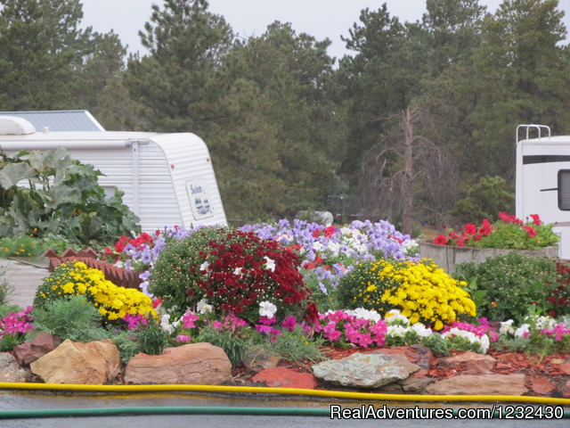 Empire Guesthouse and RV Park Campgrounds & RV Parks Pine Haven, Wyoming