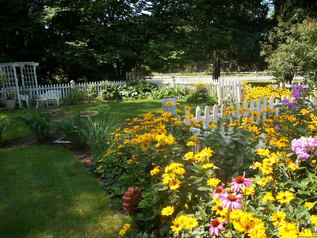 Sit Under The Arbor In The Garden | Image #3/9 | Apple Tree Lane B&B