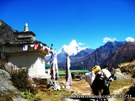 Amadablum and Yak - Mount Everest Base Camp Trekking