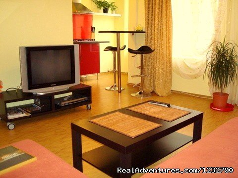 Cozy you a  2-room apartment in St. Petersburg St. Petersburg , Russian Federation Bed & Breakfasts