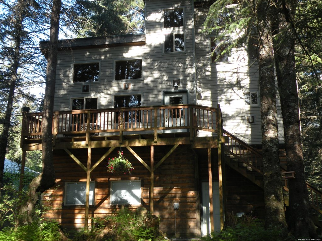 TreeFort House upper level/TreeFort Apt lower level | Image #2/14 | Beach House Rentals