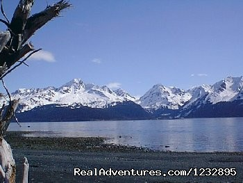View from beach on Resurrection Bay - Beach House Rentals