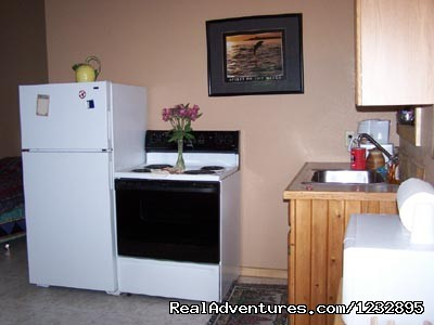 TreeFort Apartment Kitchen - Beach House Rentals