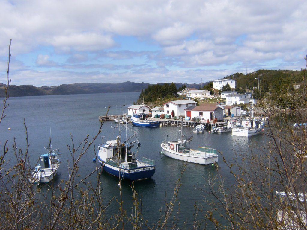 Boats at South East Bight, NL | Image #3/26 | Learn local ways with Eastern Edventures