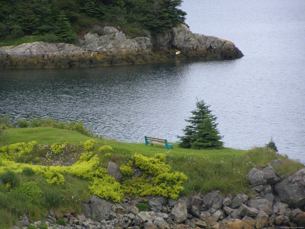 Seaside rest at Burin, Newfoundland | Image #11/26 | Learn local ways with Eastern Edventures