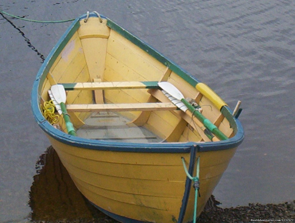 Dory moored in Rushoon, NL | Image #15/26 | Learn local ways with Eastern Edventures