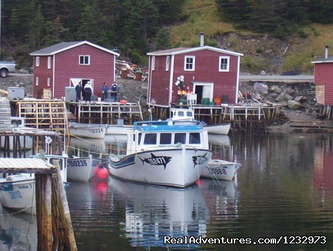 Stores and stages, Petite Forte, NL (#6 of 26) - Learn local ways with Eastern Edventures