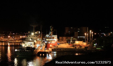 Night View of St. John's - Learn local ways with Eastern Edventures