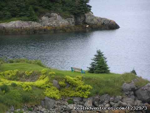 Seaside rest at Burin, Newfoundland (#11 of 26) - Learn local ways with Eastern Edventures