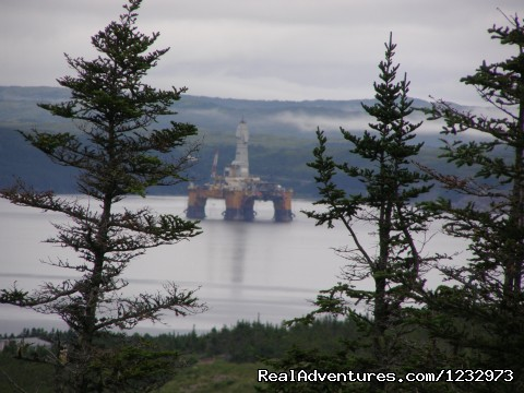 Oil Rig in Mortier Bay (#12 of 26) - Learn local ways with Eastern Edventures