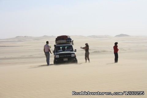 safari (#24 of 26) - Close To The Pharaohs And Beaches