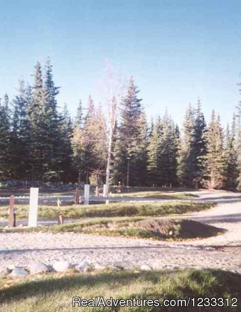 HART D RV area (#11 of 26) - Hart D Ranch:Rooms /RV Park /PO