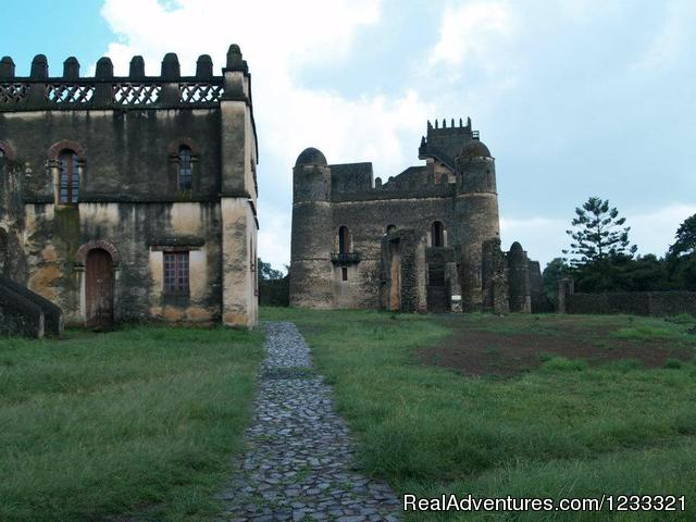 The Castle compound(Fasildes castle) - Tour to Ethiopia-Hidden Treasures Tour