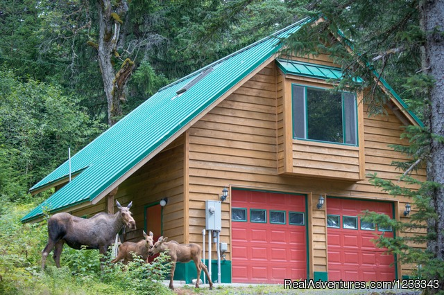 Su Casa - Haines Alaska Vacation Rental Property