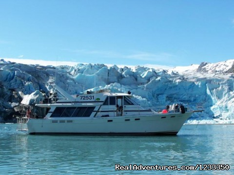 Alaska's Liveaboard Glacier Bay Cruises, 5-7 days