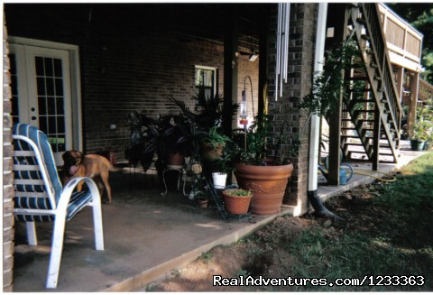 Outside sitting area - Inexpensive Lodging - Pets Allowed