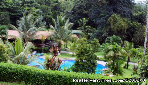 Chachagua Rainforest Hotel & Lodge