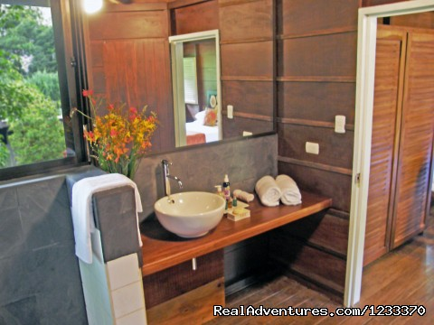- Chachagua Rainforest Hotel & Lodge