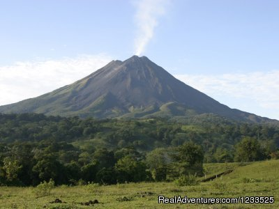 Arenal Volcano & Rainforest Natural  History Guided Walk - Desafio Adventure Company Costa Rica