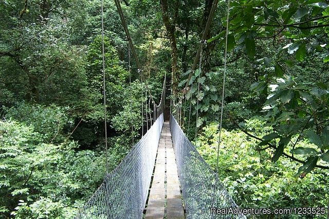 Arenal Hanging Bridges (#20 of 26) - Desafio Adventure Company Costa Rica