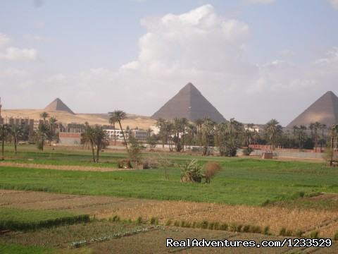 Excursion  to cairo form alexandria or portsaid.: Pyramids