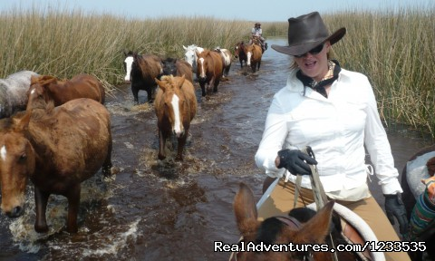 - Argentina - horseback rides with real gauchos