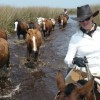 Argentina - horseback rides with real gauchos