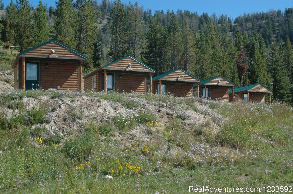 All Season Grizzly Camping Cabins @ LML | Image #5/13 | Your Yellowstone Park @ Lava Mountain Lodge