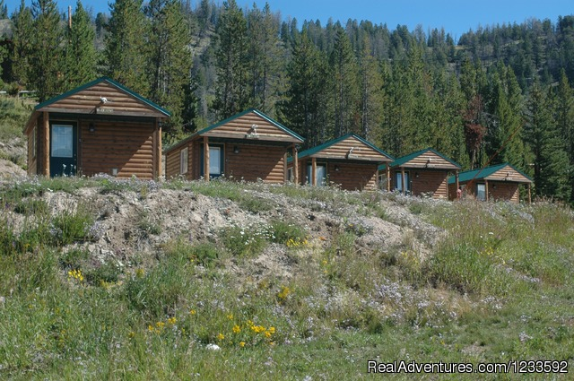 All Season Grizzly Camping Cabins @ LML - Your Yellowstone Park @ Lava Mountain Lodge