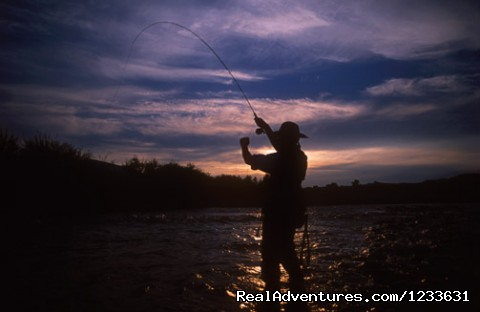 CM Ranch Tremendous Fly Fishing - CM Ranch- Beautiful and Historic Dude Ranch