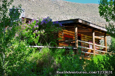 CM Ranch cabin overlooking the stream - CM Ranch- Beautiful and Historic Dude Ranch