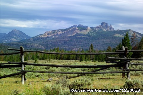 View of buck fence on the ranch - Find your Frontier at the T Cross Ranch