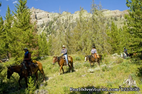 Endless trails lead from the ranch into the wilderness - Find your Frontier at the T Cross Ranch
