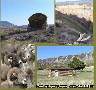 Bighorn Canyon Recreational Area Tours
