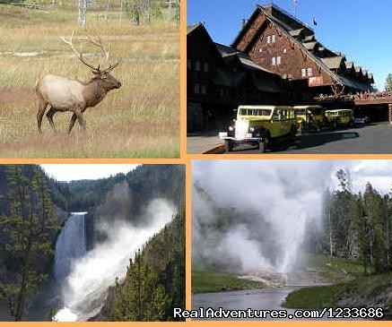 Yellowstone National Park Tours - Robin's Nest - close to Yellowstone National Park