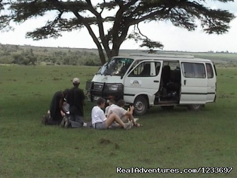 Pickinic Lunch On Safari Tour - Africa Safari in Kenya