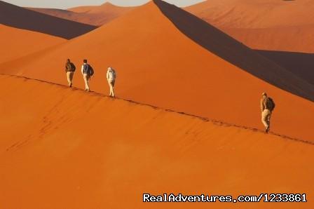Namib Dunes (#9 of 26) - Nomad Africa Adventure Tours