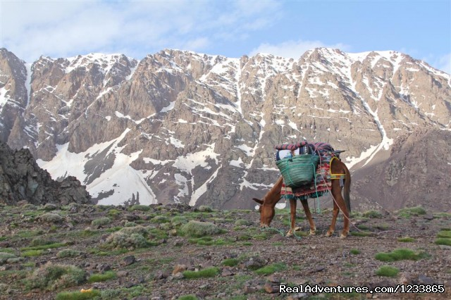 Basic camp toubkal - Trekking in Toubkal - High Atlas Mountain