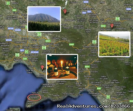Irpinia wine tour (#4 of 5) - Amalfi coast tours, Vesuvius wine tour