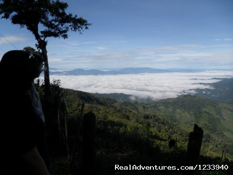 Top 5 NEW things to do at Cusuco National Park: cusuco national park, san pedro sula, honduras