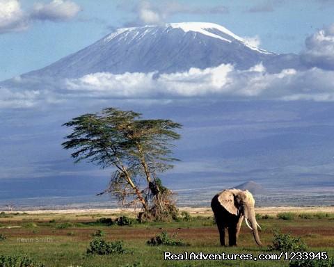 Kilimanjaro Climb Marangu Route Coca Cola Route