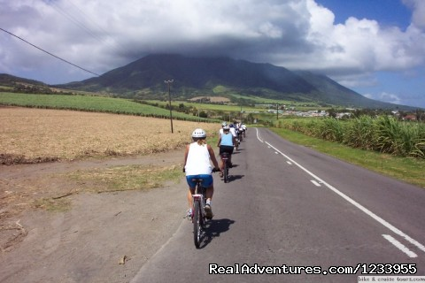 - Bike & Cruise Tours in Western Caribbean