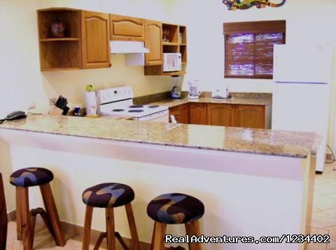 - Perfect Tamarindo Vacation Ocean view luxury cond