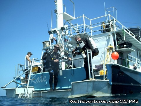 Liveaboard Scuba Diving Charter Photo
