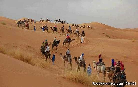 Morocco Tour Guide  Morocco Private Tours Temara  Rabat Morocco Vacation