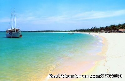 Great beaches (Whales Coast) | Image #14/16 | Relax and security in Brazil at Pousada Aquavilla