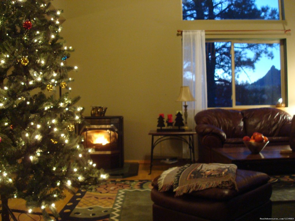 Enjoy the warmth of the pellet stove | Image #9/26 | Pikes Peak Retreat In Pikes National Forest