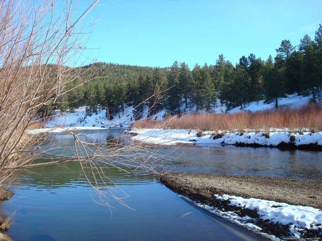 Beautiful drive along Platte river just 8 miles away | Image #17/26 | Pikes Peak Retreat In Pikes National Forest