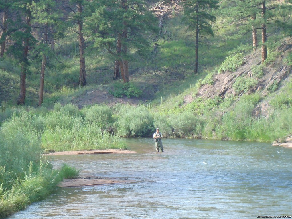 Gold Medal Fishing on Platte River | Image #23/26 | Pikes Peak Retreat In Pikes National Forest