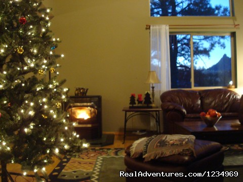 Enjoy the warmth of the pellet stove - Pikes Peak Retreat In Pikes National Forest